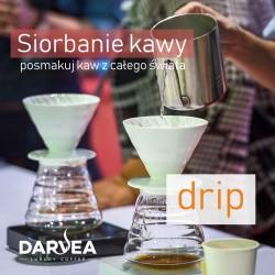 Siorbanie Kawy i drip - cupping 16.11.2019