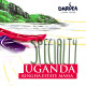 Darvea Uganda Kingha Estate - kawa ziarnista specialty
