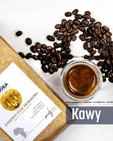Kawy świeżo palone Darvea